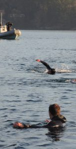 The first ever FDU(P) unit race was held on December 13 in Esquimalt Harbour. Photo: submitted